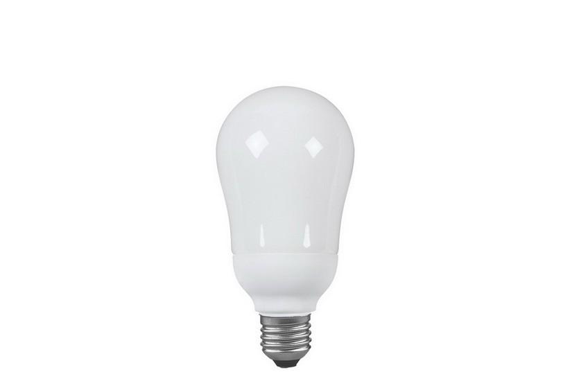 PAULMANN P 89020 Úsporná žárovka E27 20 W 827
