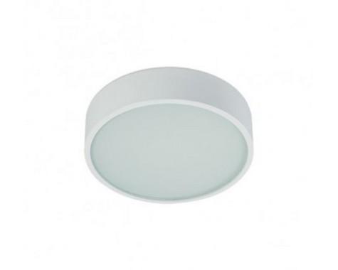 Stropní svítidlo  LED BPM 4222.02