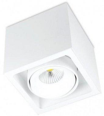 Stropní svítidlo  LED BPM 8207.01.D40.3K
