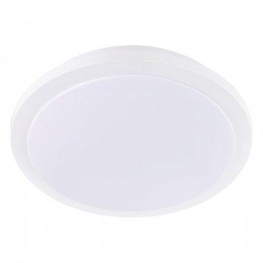 Stropní svítidlo LED  97319