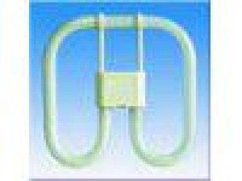 Úsporná žárovka FU 2D/21W/6500
