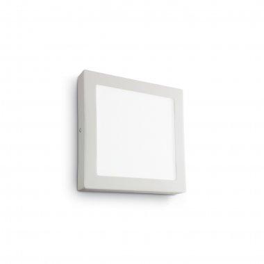 Svítidlo na stěnu i strop LED  IL 138657