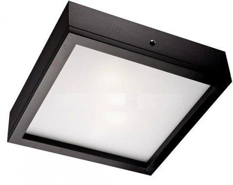 Stropní svítidlo LAM 12599