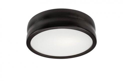 Stropní svítidlo LAM 35819