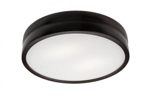 Stropní svítidlo LAM 35826