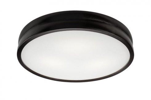 Stropní svítidlo LAM 35833