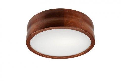 Stropní svítidlo LAM 35864