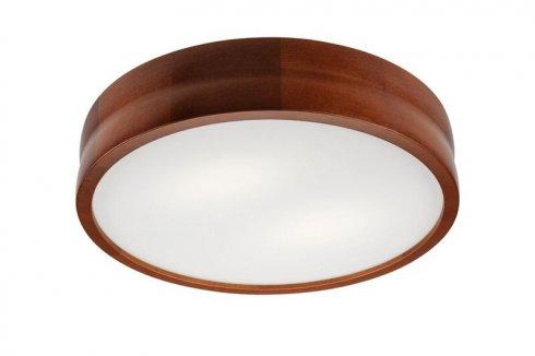 Stropní svítidlo LAM 35871