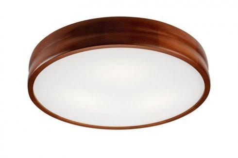 Stropní svítidlo LAM 35888