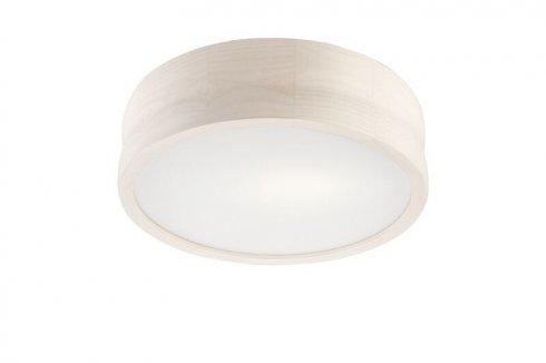 Stropní svítidlo LAM 35918