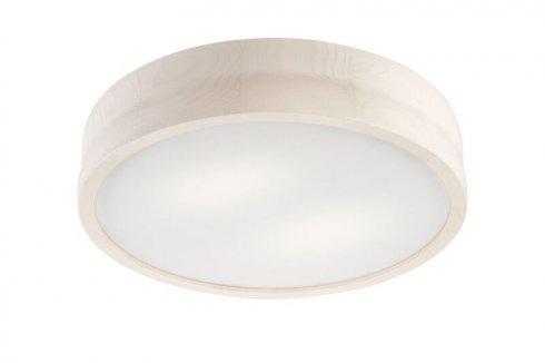 Stropní svítidlo LAM 35925