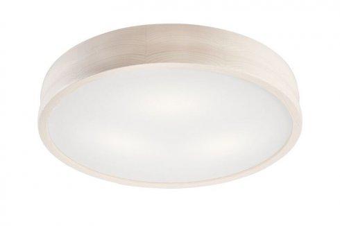 Stropní svítidlo LAM 35932