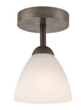 Stropní svítidlo 28293 LM-1.55