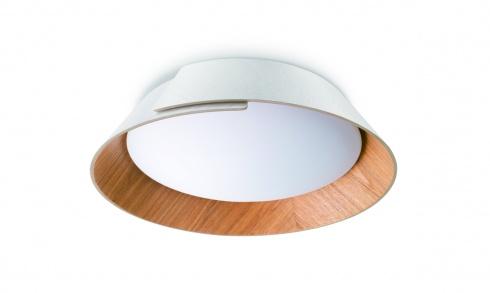 Stropní svítidlo LED 49020/31/P1