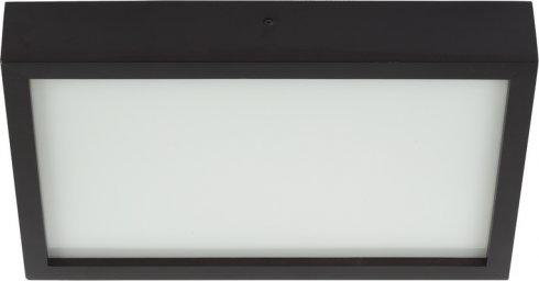 Svítidlo na stěnu i strop NW 6305