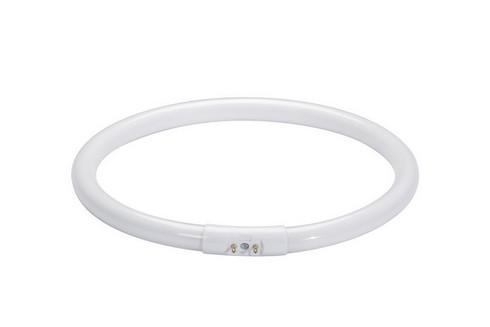 Zářivka Ringform T5 22W 2GX13 225mm teplá bílá