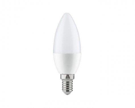 LED žárovka 3,5W E14 P 28340