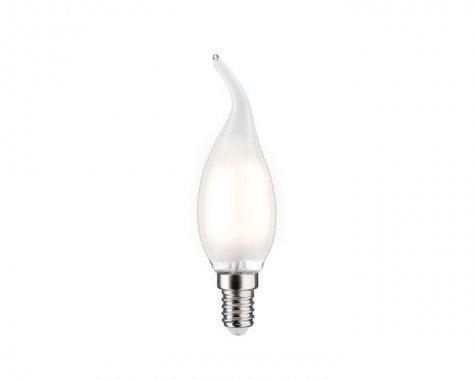 LED žárovka 2,5W E14 P 28362