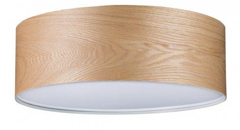 Stropní svítidlo P 79650