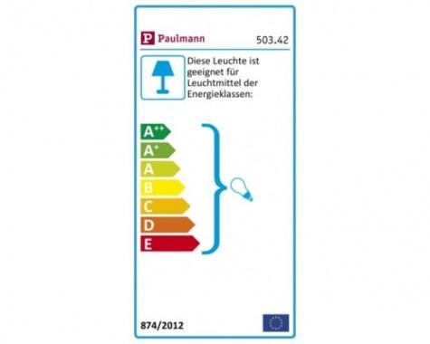 Lustr/závěsné svítidlo P 50342-1