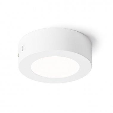 Stropní svítidlo  LED R11281