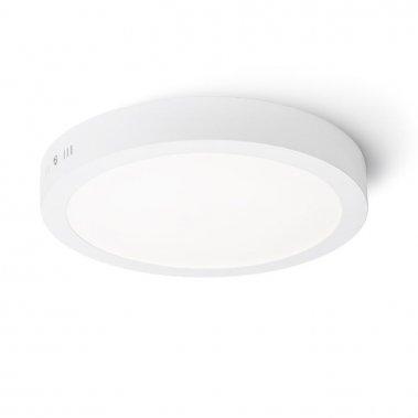 Stropní svítidlo  LED R11283