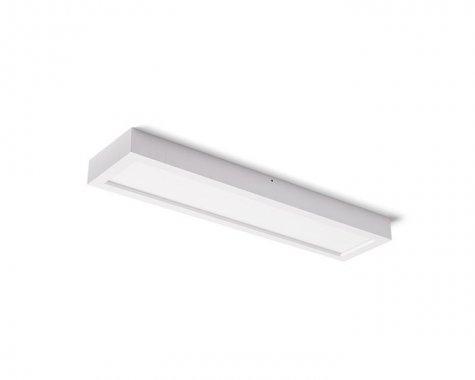 Stropní svítidlo  LED R12064