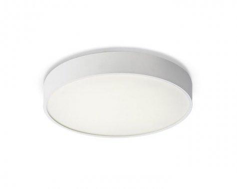 Stropní svítidlo  LED R12115