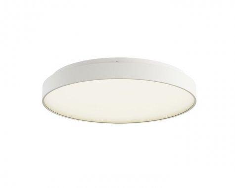 Stropní svítidlo  LED R12117