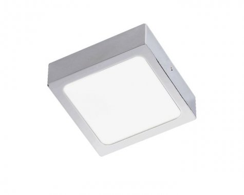 Stropní svítidlo  LED R12142