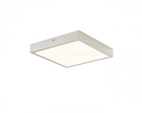 Stropní svítidlo  LED R12146
