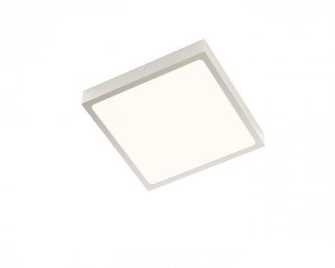 Stropní svítidlo  LED R12147