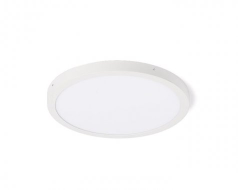 Stropní svítidlo  LED R12203