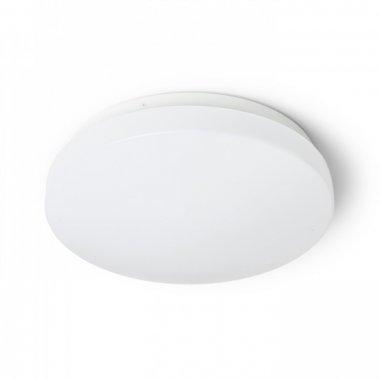 Stropní svítidlo  LED R12431