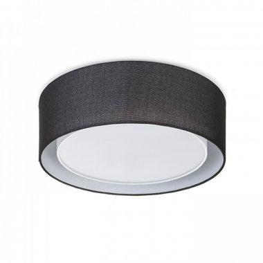 Stropní svítidlo R12491