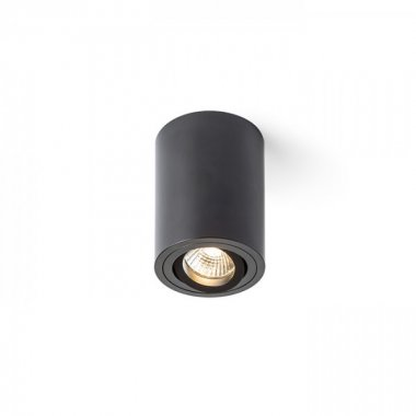 Stropní svítidlo R12517