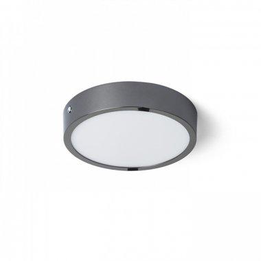 Stropní svítidlo  LED R13074