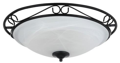 Stropní svítidlo RA 3723