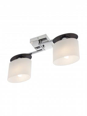 Stropní svítidlo RD 01-1028