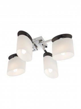 Stropní svítidlo RD 01-1029
