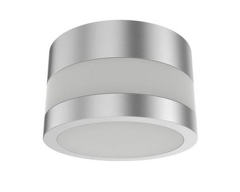 Stropní svítidlo R10127