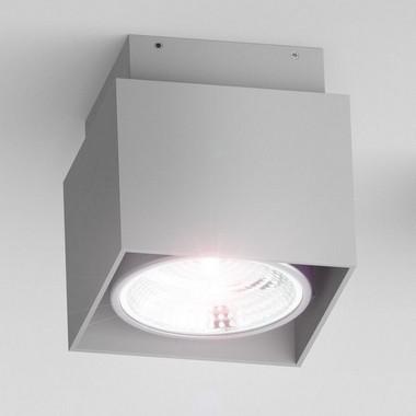 Stropní svítidlo R10155