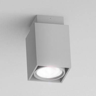 Stropní svítidlo R10164