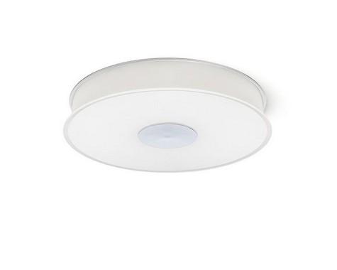 Stropní svítidlo R10577