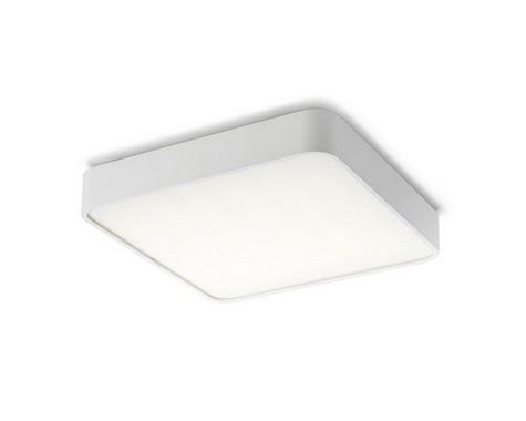 Stropní svítidlo  LED R10582