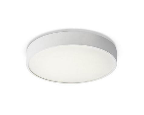 Stropní svítidlo  LED R10583