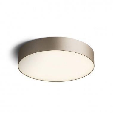 Stropní svítidlo  LED R12845