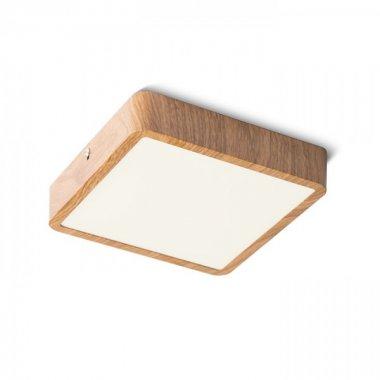 Stropní svítidlo  LED R13084