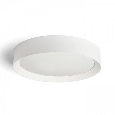 Stropní svítidlo  LED R13326