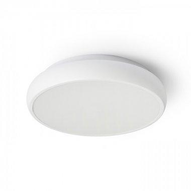 Stropní svítidlo  LED R13327